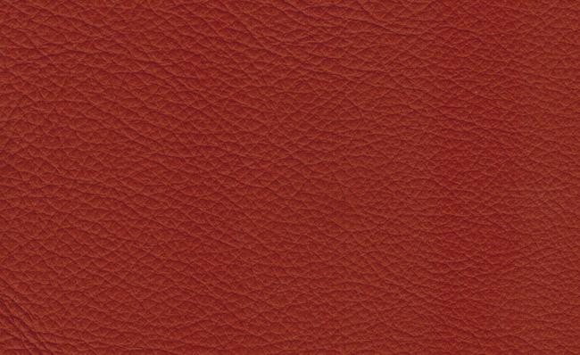 Serie Xtreme – X39168