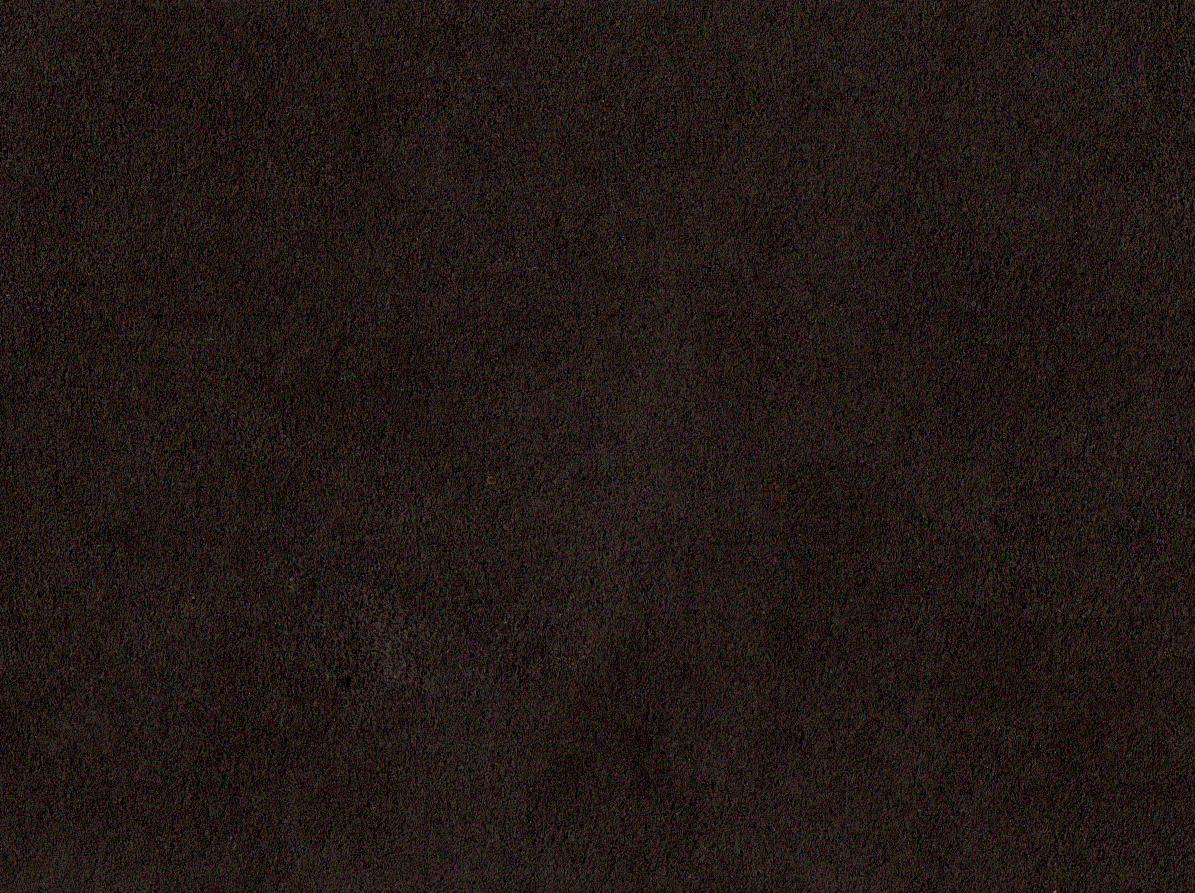 Amaretta 7331