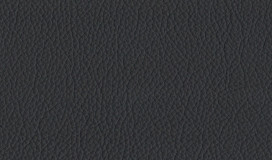Serie Xtreme - X79164