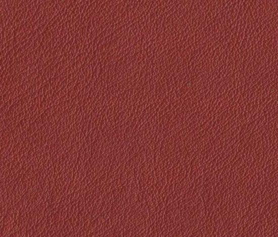 Premium Serie Nappa 1722